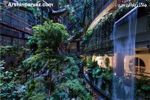 جنگل بارانی امارات