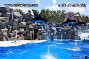 پارک دلفین های باتومی گرجستان