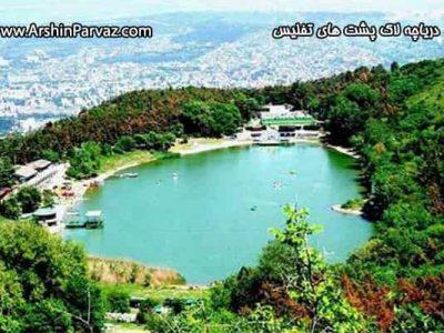 دریاچه لاک پشت های تفلیس